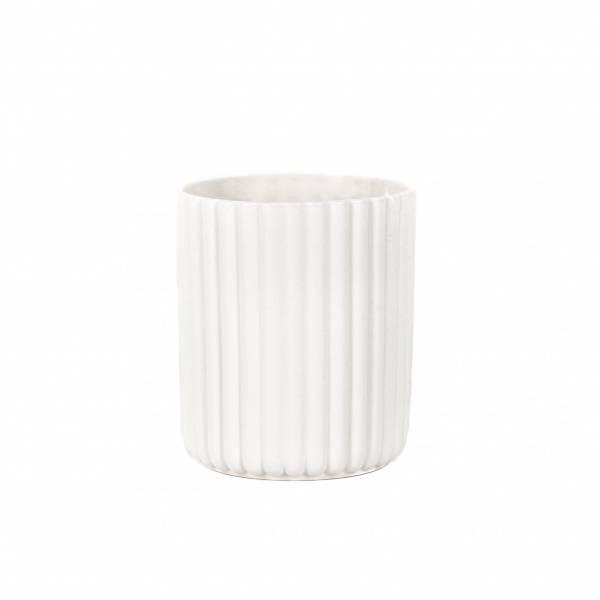 Bilde av Alba cup six - hvit