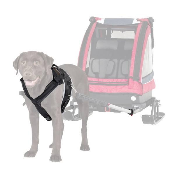Hunde kit oppgradering