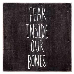 Bilde av ALMOST: Fear Inside Our Bones