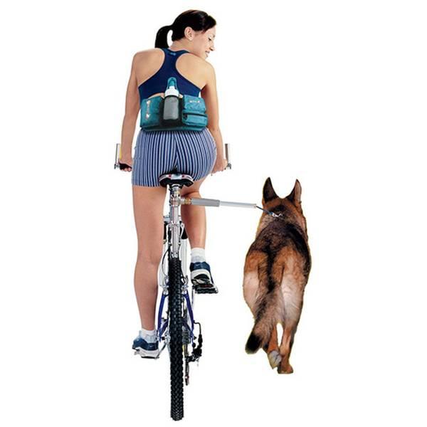Bilde av Hundebånd til sykkel