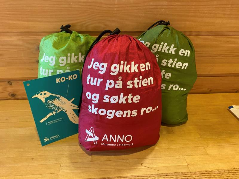 Bilde av Hengekøye