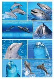 Bilde av DECOR Stickers Delfiner, 3 ark (10 pakk)