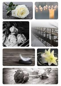 Bilde av Etiketter Tunge tider, Sort rose, 2 ark (10 pakk)