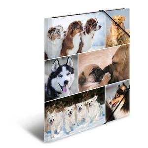 Bilde av Strikkmappe i robust kartong, A4, Hunder (3 pakk)
