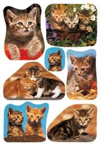 Bilde av DECOR Stickers Bilder av katter, papir, 3 ark (10