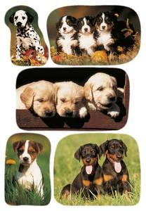 Bilde av DECOR Stickers Bilder av hundevalper, 3 ark (10
