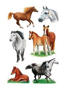 Bilde av DECOR Stickers  Forskjellige hester, 3 ark (10
