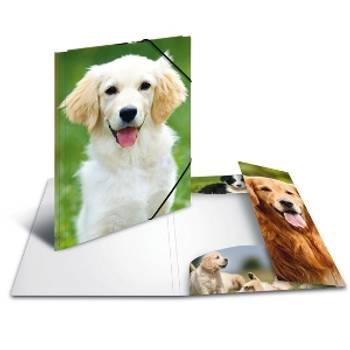 Bilde av Animals