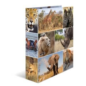 Bilde av HERMA ringperm i kartong, Dyr i Afrika (10 pakk)