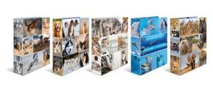 Bilde av Sortiment Animals, HERMA ringpermer i kartong,