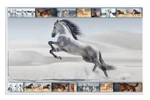 Bilde av Skriveunderlag i kartong, 550 x 350 mm, Hester (3