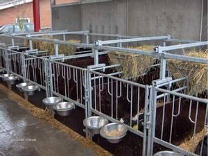 Bilde av Kalveboks
