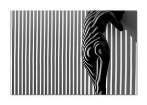 Bilde av Shadowland #1 (120x80 bilde Plexiglass)
