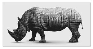 Bilde av Rhino (120x60 bilde Plexiglass)