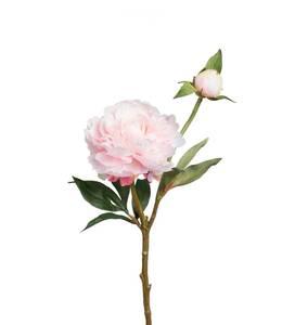 Bilde av Pion rosa 35 cm