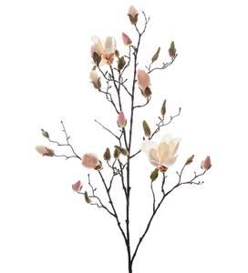 Bilde av Magnolia gren lys rosa 110 cm