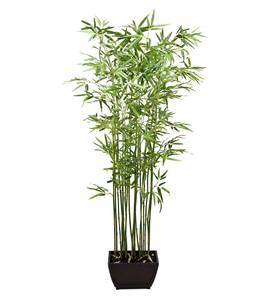 Bilde av Bambus (190 cm)