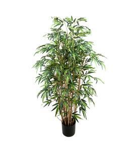 Bilde av  Bambus (150 cm)