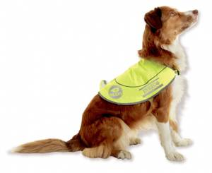 Bilde av Refleksvest til hund