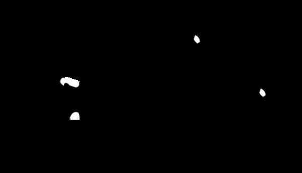Kayakpro Speedstroke Compact Kajakkergometer