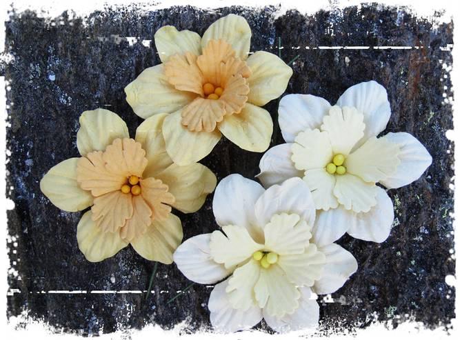 Bilde av Påskeliljer