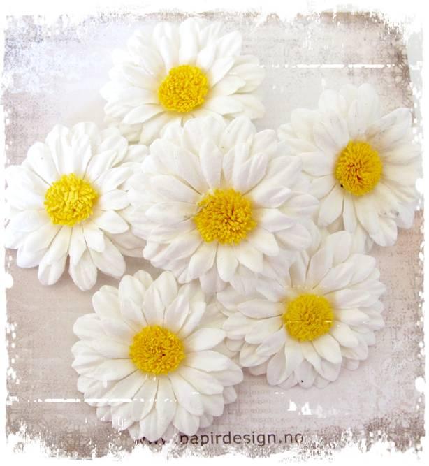 Bilde av Blomster, diverse