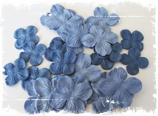 Bilde av Hortensia, blå (6)