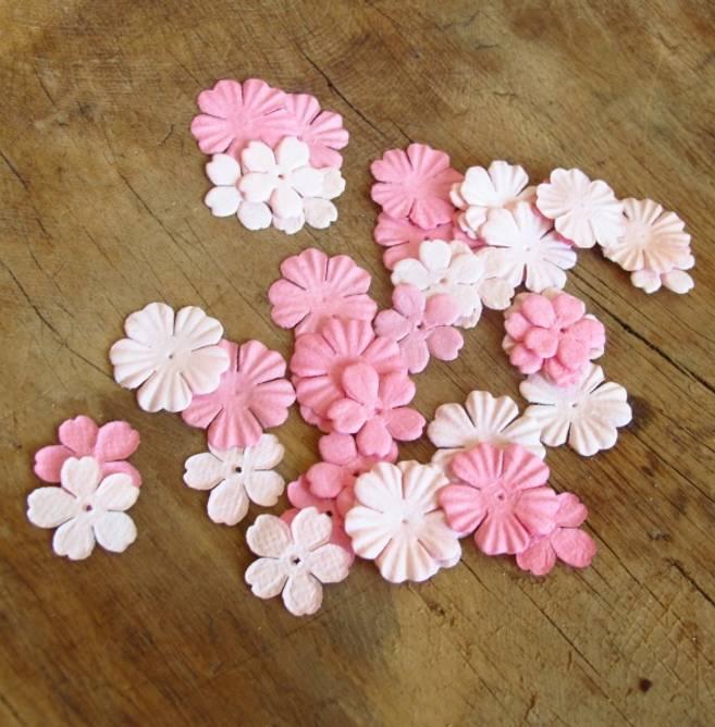 Bilde av Hortensia, lys rosa (6)