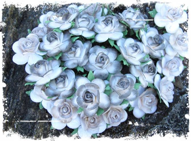 Bilde av 2,5 Roser farget kant grå (6)
