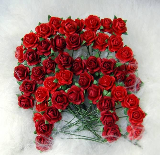 Bilde av Nr 43, Roser 1,2 Rød (6)