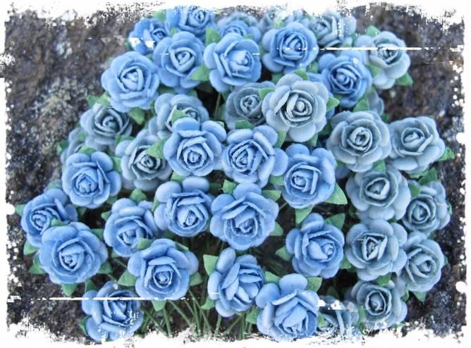 Bilde av Nr 80, Roser 1,2 Vintage blå