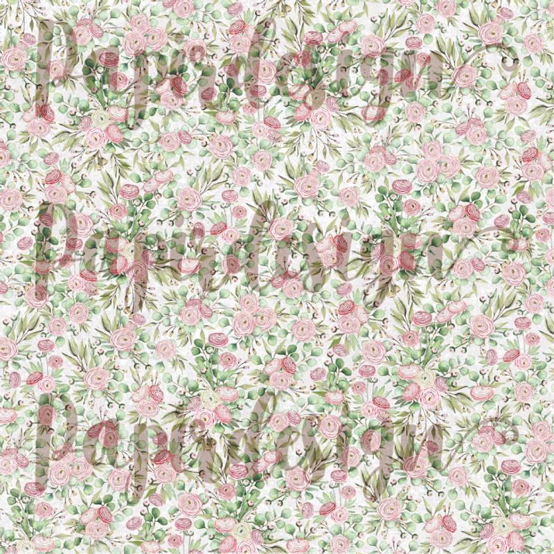 Bilde av PD 2100567 Ranukler ( 25 ark )
