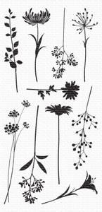 Bilde av MFT Flower Silhouettes stamp set