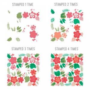 Bilde av Concord & 9th Darling Petals Turnabout Stamp Set