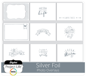 Bilde av Project Life Silver Foil Photo Overlays