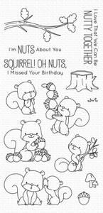 Bilde av MFT Squirrel dies