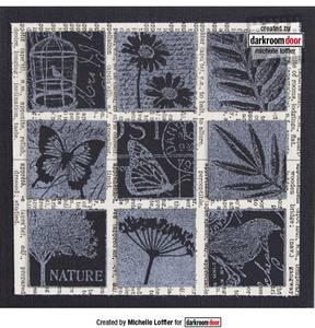 Bilde av Darkroom Door Rubber Stamps - Garden Inchies