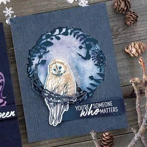 Bilde av Hero Arts Color Layering Owl Frame Cuts Dies