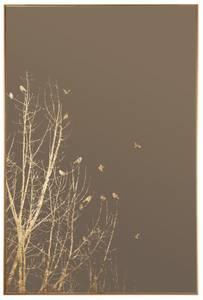 Bilde av Speil m/gullramme