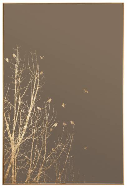Speil m/gullramme fugl/tremotiv 60x90cm