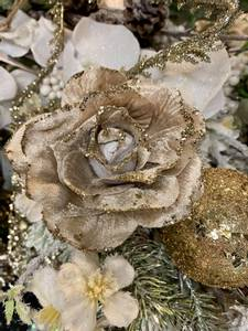 Bilde av Beige Rose
