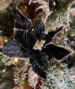 Bilde av Julestjerne blomst, sort.