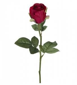 Bilde av Stilkrose 50cm rød