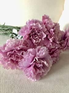 Bilde av Nellik 40cm rosa