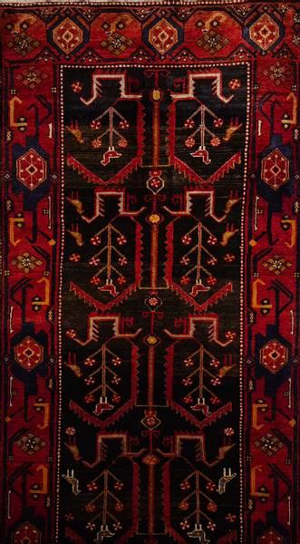 Bilde av Persisk Kolliaii str 310 x 117