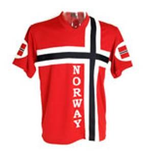 Bilde av Supporter t-skjorte i norsk flagg, barn