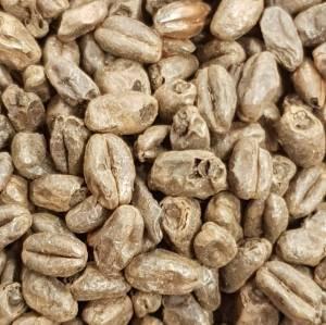 Bilde av Castle Malting Wheat Chocolate EBC 800 - 1100