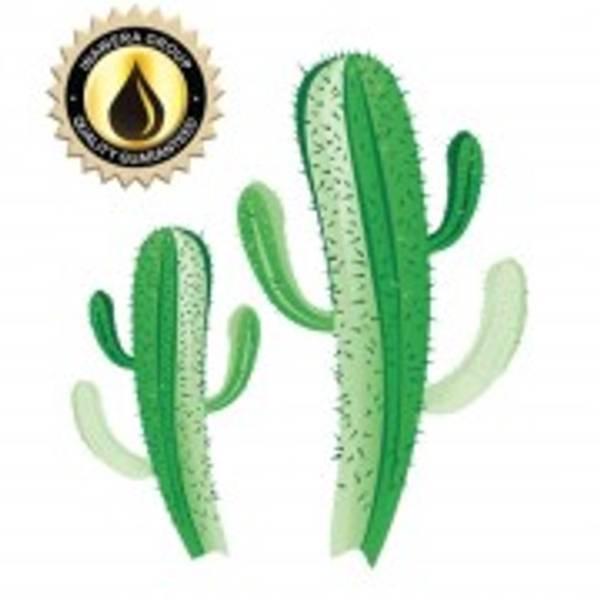 Bilde av Inawera (INW) - Cactus Flavor, Aroma
