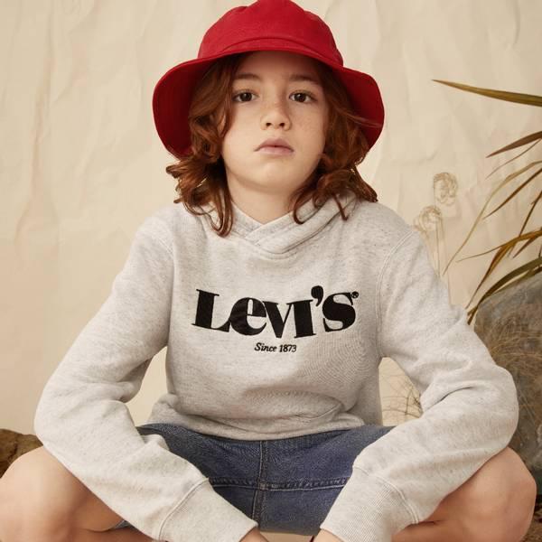 Bilde av Levis Washed down logo hoodie - grey