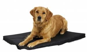 Bilde av Hundemadrass, LARGE, (88x54)